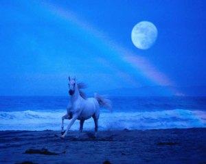 horsemoon.jpg